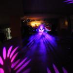 Dancepárty Reprezentační ples města Mladá Boleslav 7.1.2012/už od r.2003/  Robe light No 1